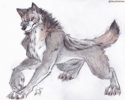 werewolf practice