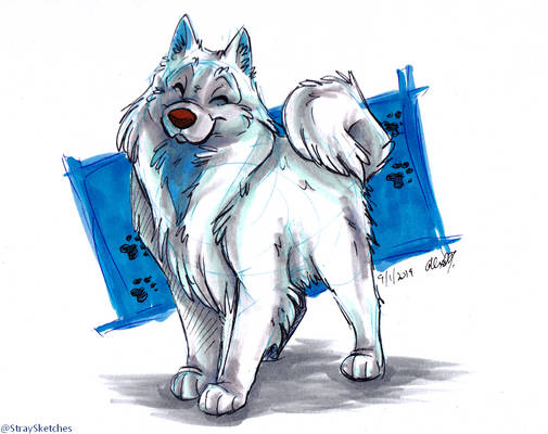 Doggust - Samoyed