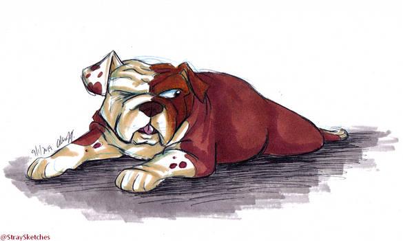 Doggust - English Bulldog