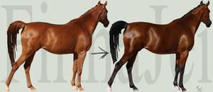 Horse Color Change Tutorial