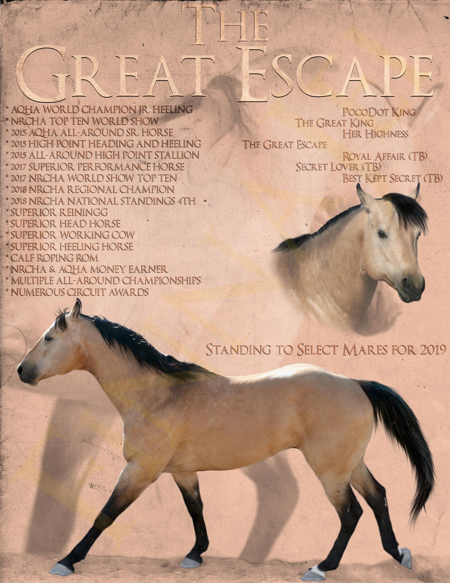 The Great Escape by FinnaJei