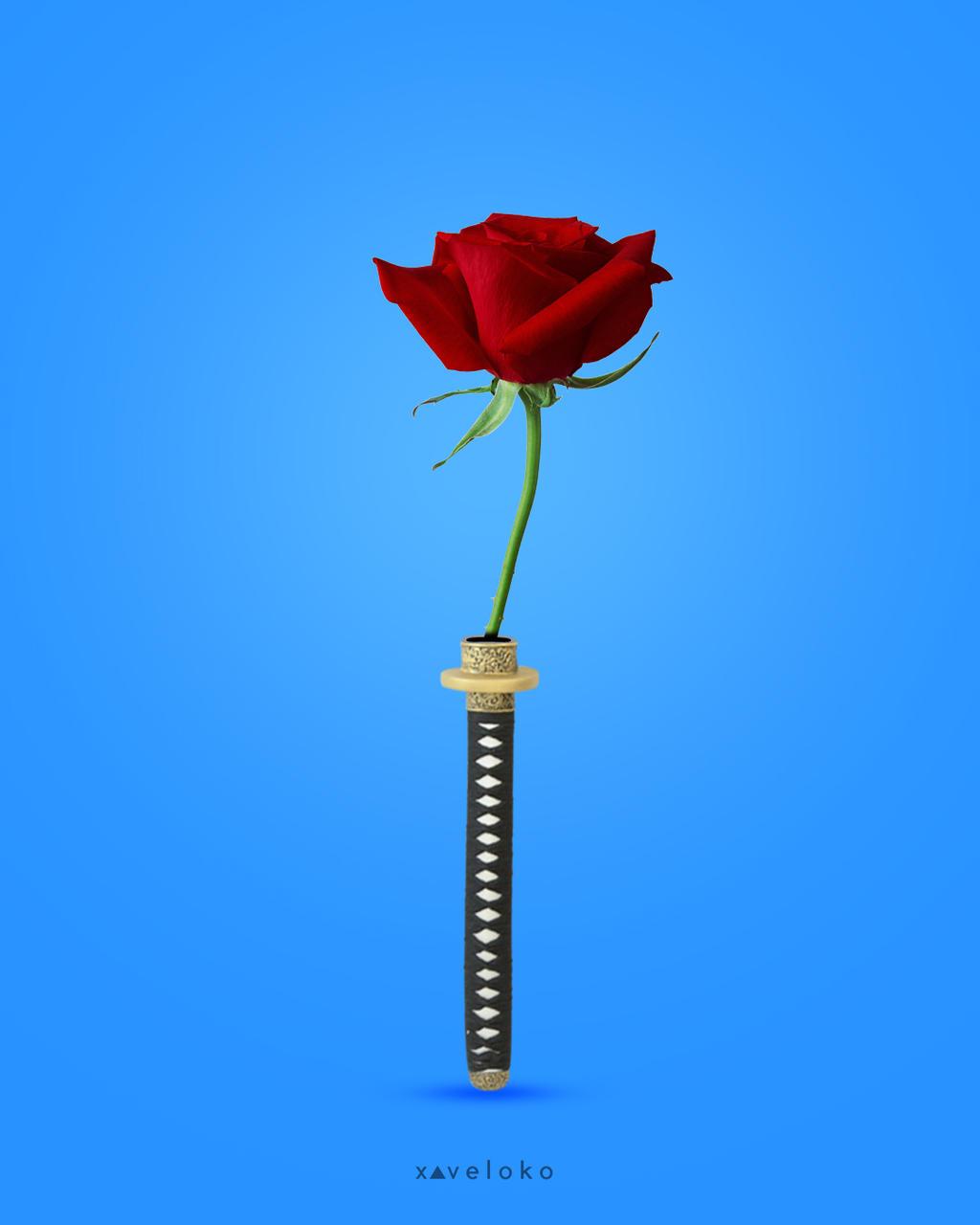 Romantic Weapon by xavierlokollo