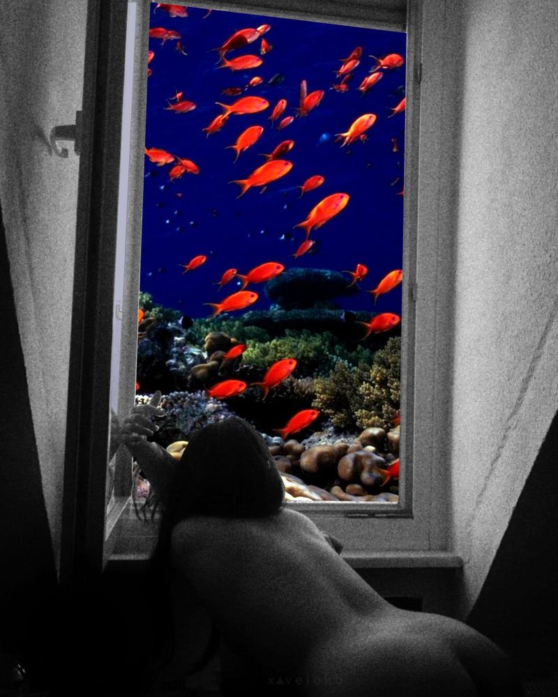 Aquascape by xavierlokollo