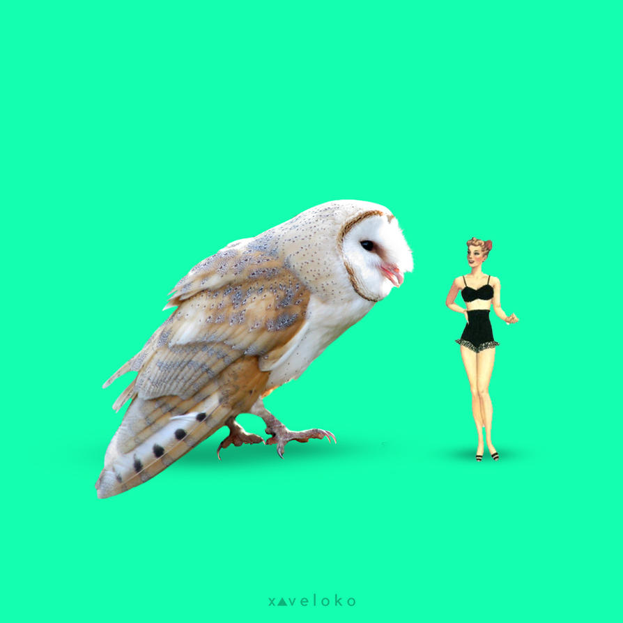 Massive Bird  by xavierlokollo