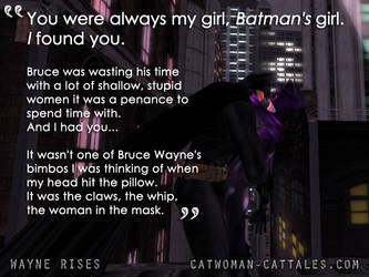 Batman and Catwoman: You were always my girl by chrisdee
