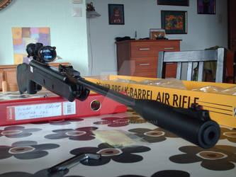 The Airgun of Airguns by SindreAHN