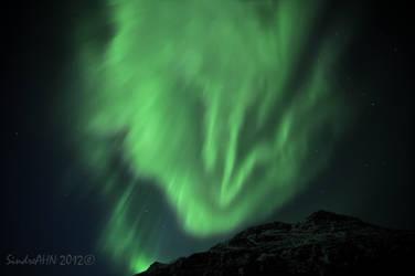 The Aurora Wolf by SindreAHN