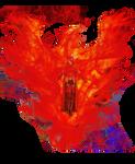 Scarlet Witch - Phoenix Host