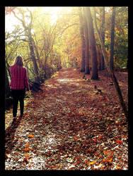 Fallen Leaves by Mrs-Olympia