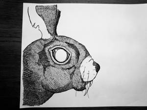 Rat Bunnii