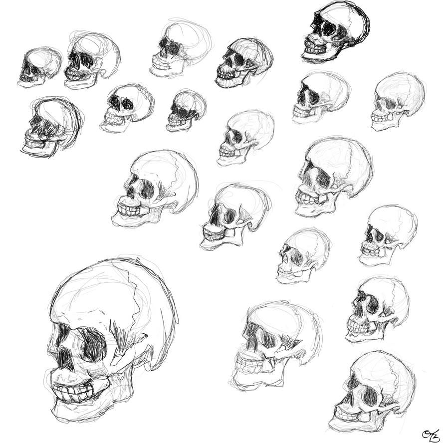 Skull Gesturedrawing by olivebates