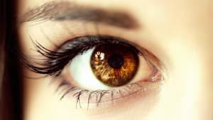 The Eye by Mofuba
