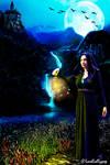 Fantasy World Contest