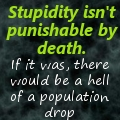 Stupidity by HCross9820