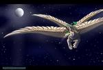 Shira's Flight