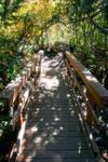 Bridge to Fantasy Colorized