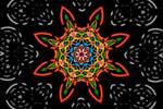 Color Chaos - The Mandala