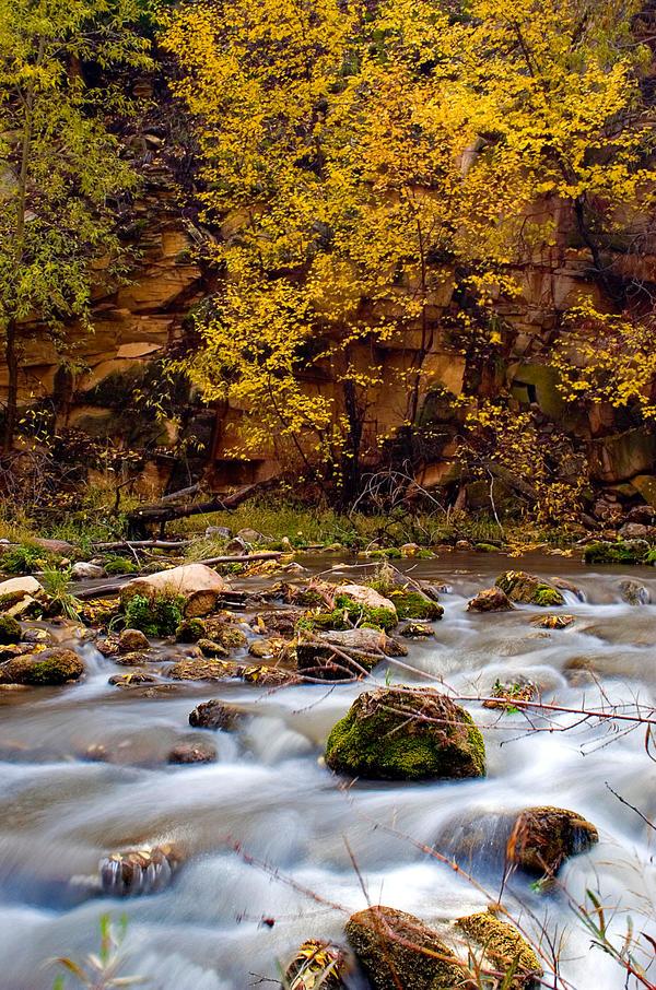 Sheep Creek by Nestor2k