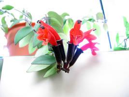 Lipstick Flower 2 by Nestor2k