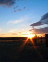 Mansface Sunset by Nestor2k
