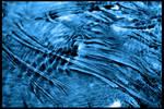 Bacterial Flow
