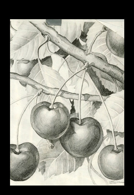 Apples by kubagami