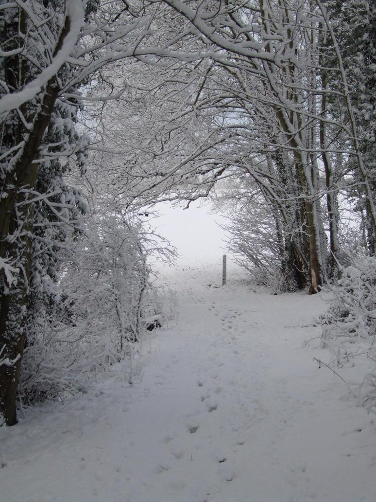 Snowy Path 3 by Paulus1962