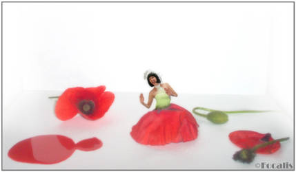 Poppy Dress by Focalis