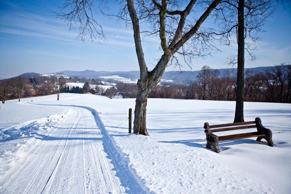 Winter Wonderland in New Jersey For Sale
