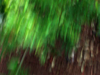 foresty blur