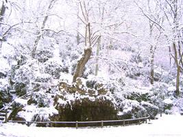 little snowy waterfall by Ceridwenn