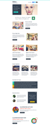 Flatro - Responsive Email Newsletter Template by asramnath