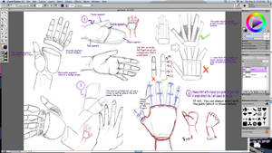 Tutorial 3: hands