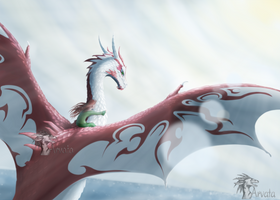 CM: Dragon's Wing by Arvata