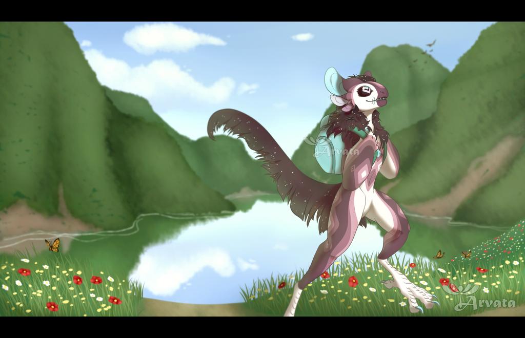 CM: Adventures - Robin by Arvata