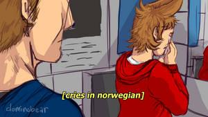 Cries In Norwegian