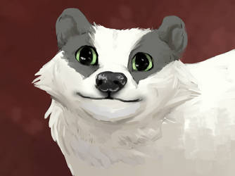 Polite badger by DominoBear