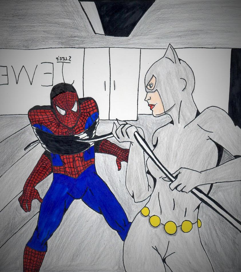 Spider-Man vs Catwoman by ElvisPresleyFan3577