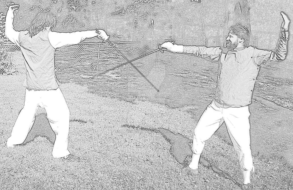 Fencing (Picasa effect) by Rangerbaldwin