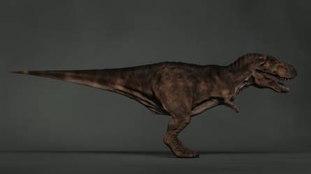 WIP Tyrannosaurus Rex