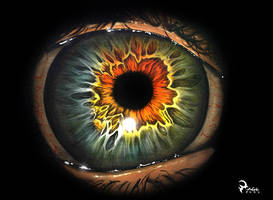 Iris by albertoguerra