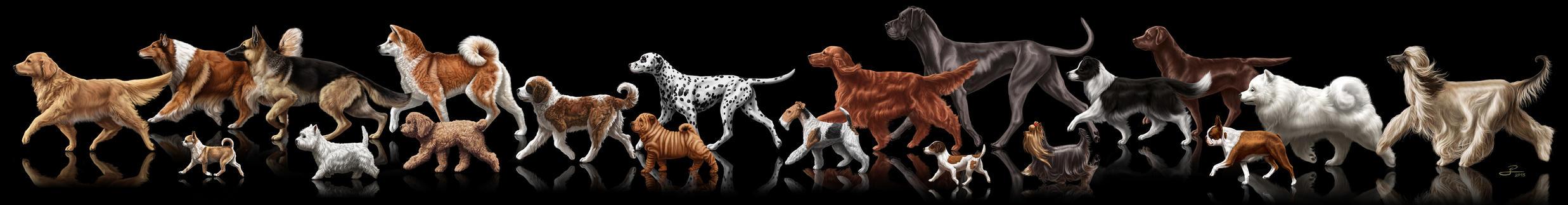 The Walking Dogs by albertoguerra