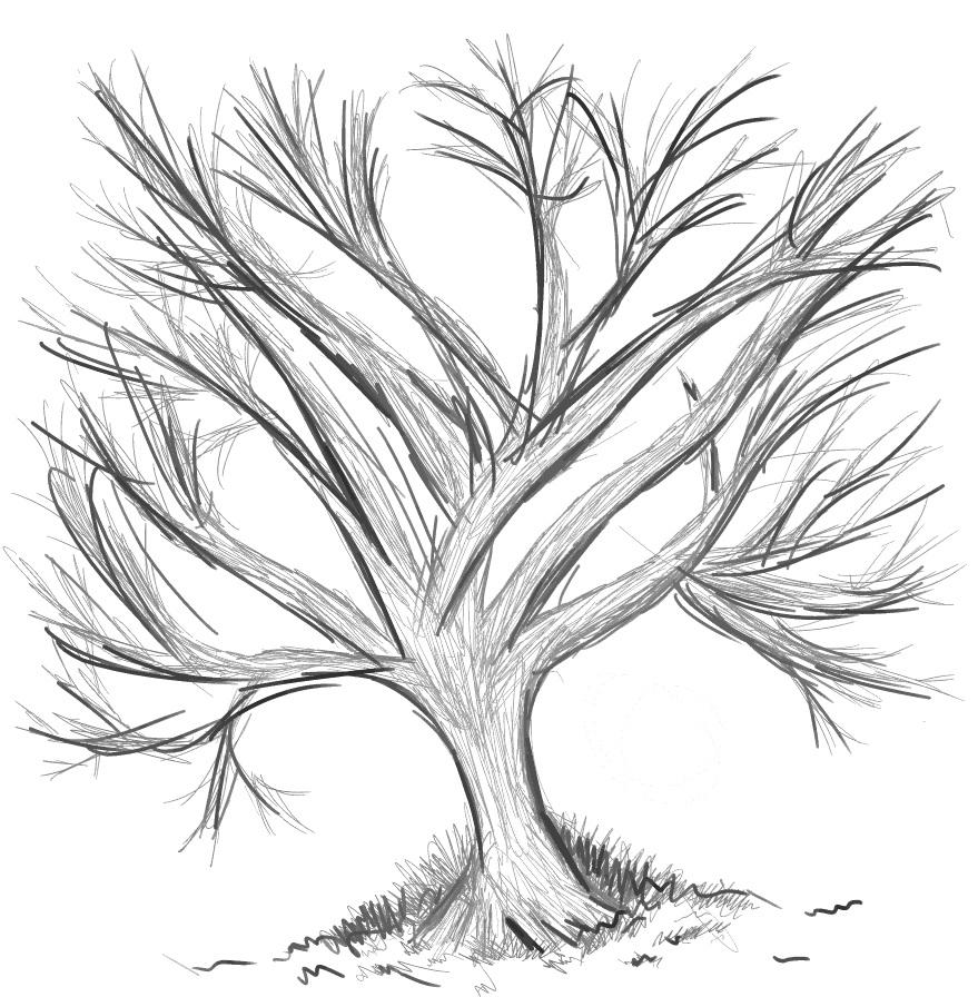 Random black n' white tree sketch by chiichiimouse on ...