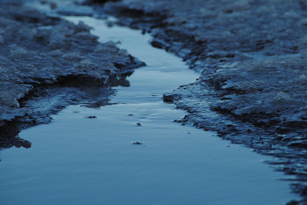 Macro River III