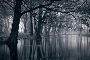 Dark Park by Syrjusz