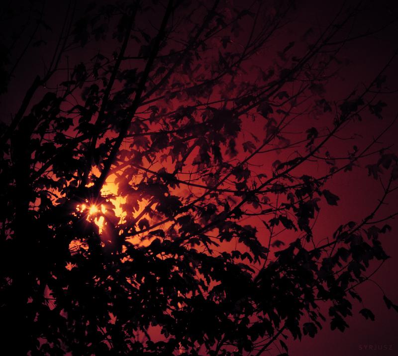 Darkness by Syrjusz