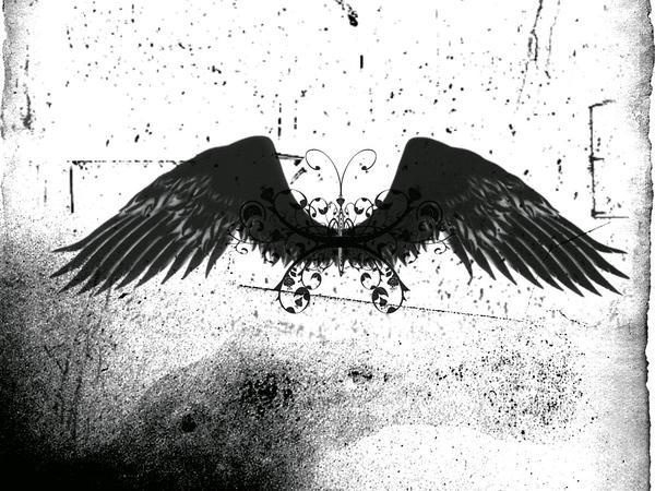 wings by blaqndarq