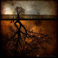 Reflection on Life by Aart-van-Pixxel