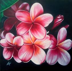 Pink by Leuseni