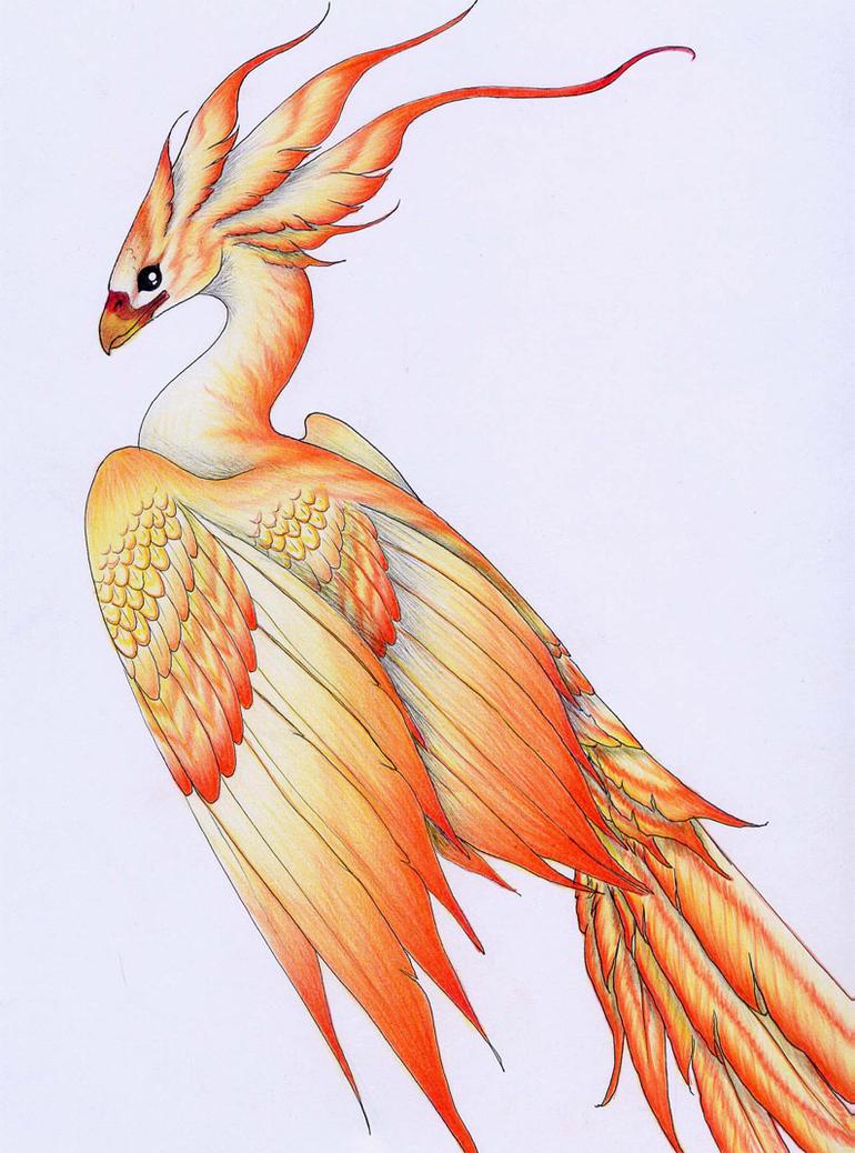 Как рисовать птиц и фениксов